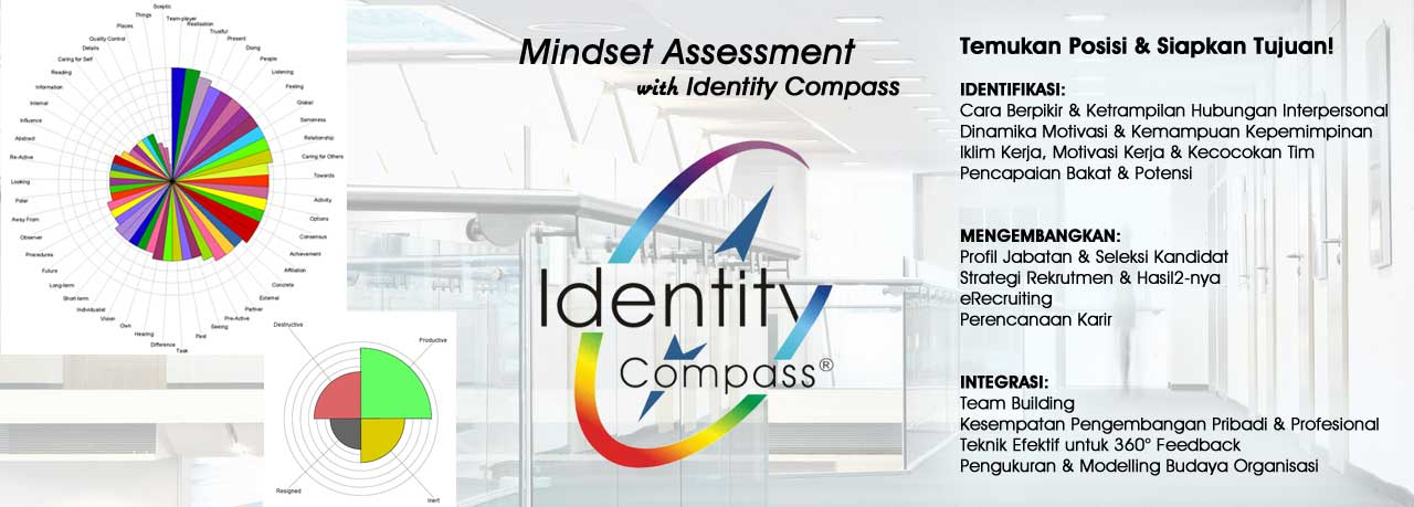 Mindset Assessment