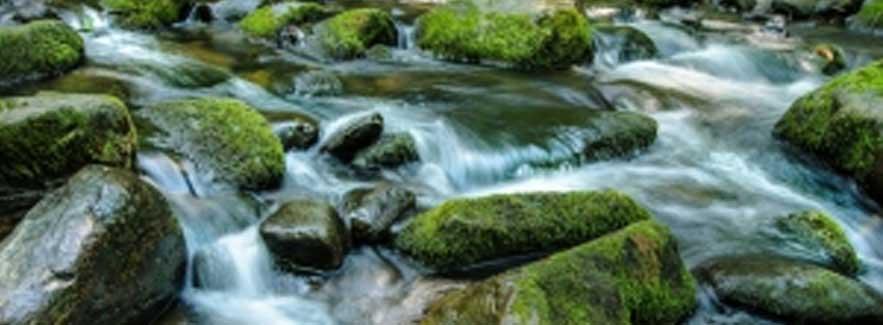 Adakah Air Yang Mengalir Mundur?